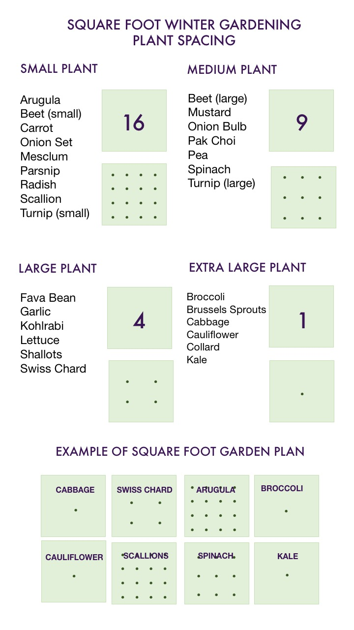 Winter Square Foot Garden Plan